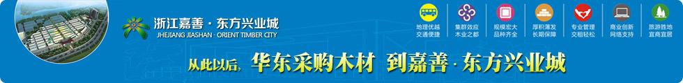浙江嘉善东方兴业城